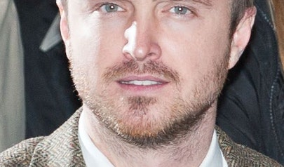 Aaron Paul photo