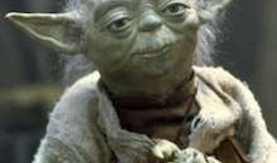 Yoda photo