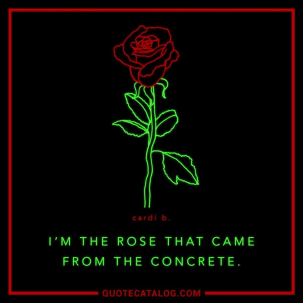 I'm the rose that came from the concrete. — Cardi B