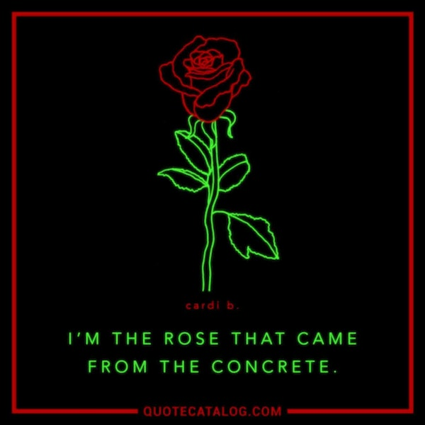 I'm the rose that came from the concrete.