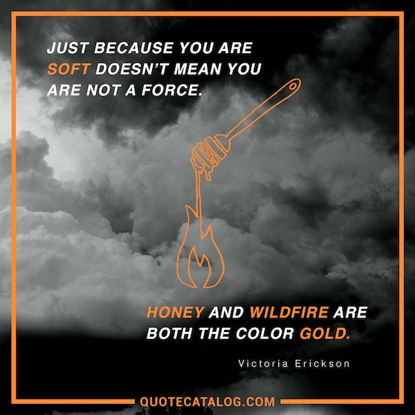 Just because you are soft doesn't mean you are not a force. Honey and wildfire are both the color gold. — Victoria Erickson