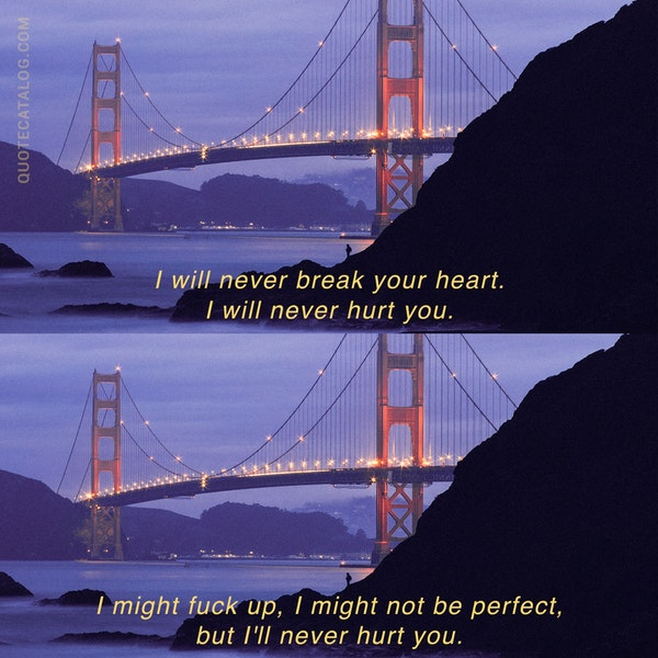 I will never break your heart. I will never hurt you. I might fuck up, I might not be perfect, but I'll never hurt you. — Liz Reinhardt