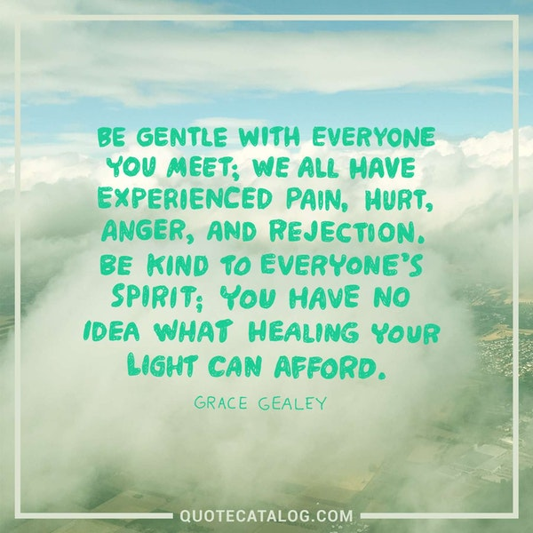 Be gentle with everyone you meet; we all have experienced pain, hurt, anger, and rejection. Be kind to everyone's spirit; you have no idea what healing your light can afford. — Grace Gealey