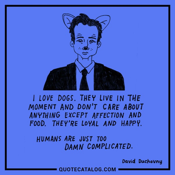 I love dogs. They live in the moment and don't care about anything except affection and food. They're loyal and happy. Humans are just too damn complicated. — David Duchovny