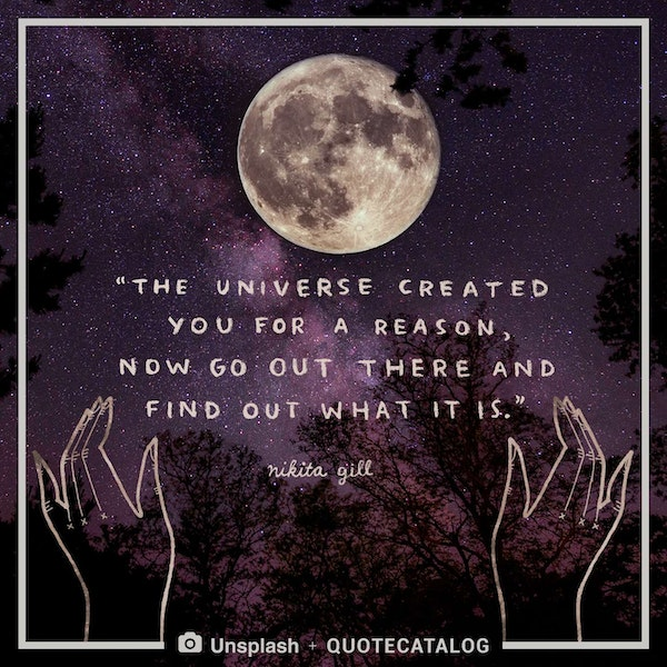 The universe created you for a reason, now go out there and find out what it is.
