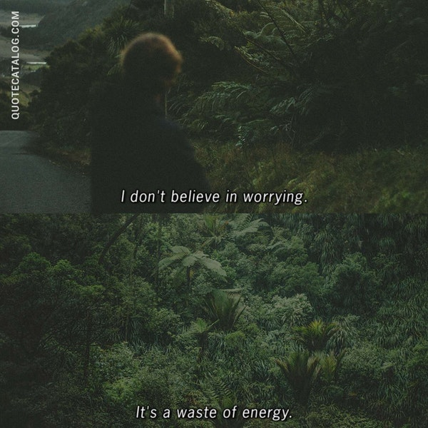 I don't believe in worrying. It's a waste of energy. — Malinda Lo