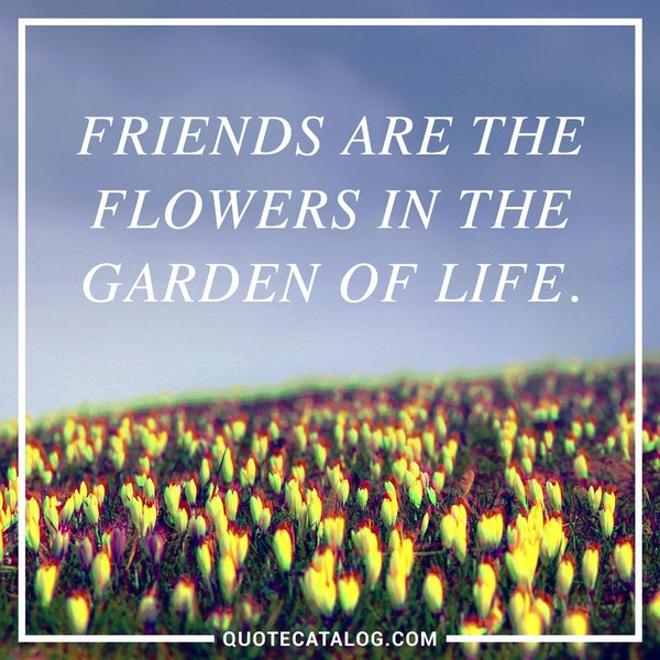 Friends are the flowers in the garden of life. — Unknown