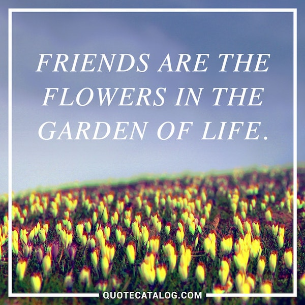 Friends are the flowers in the garden of life.