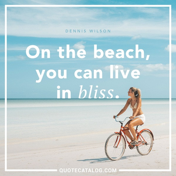 On the beach, you can live in bliss. — Dennis Wilson