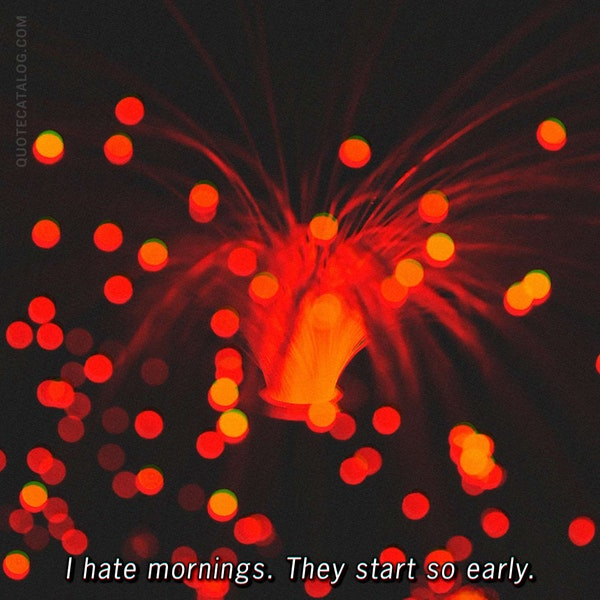 I hate mornings. They start so early.