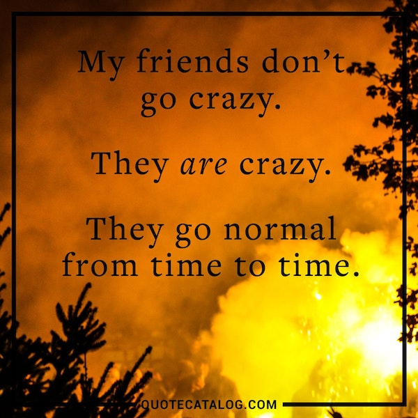 My friends don't go crazy. They are crazy. They go normal from time to time. — Unknown