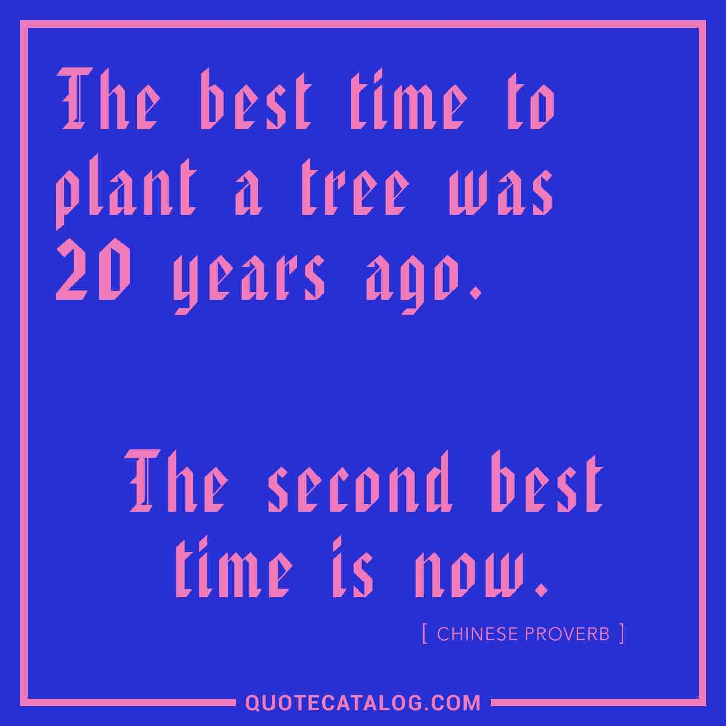 Chinese Proverb Quote The Best Time To Plant A Tree Was 20 Yea