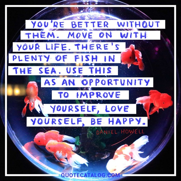 You're better without them. Move on with your life. There's plenty of fish in the sea. Use this as an opportunity to improve yourself, love yourself, be happy. — Daniel Howell