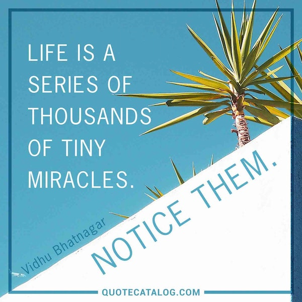 Life is a series of thousands of tiny miracles. Notice them. — Vidhu Bhatnagar