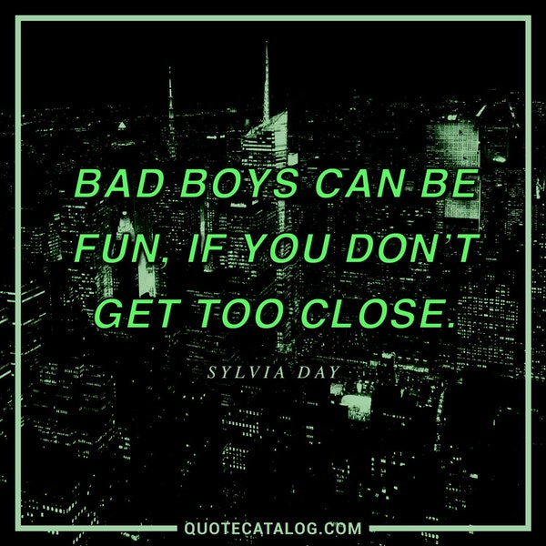Bad boys can be fun, if you don't get too close. — Sylvia Day