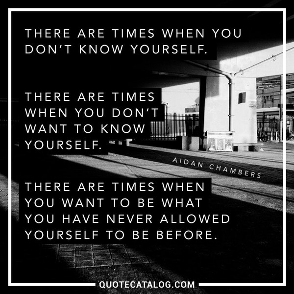 There are times when you don't know yourself. There are times when you don't want to know yourself. There are times when you want to be what you have never allowed yourself to be before. — Aidan Chambers