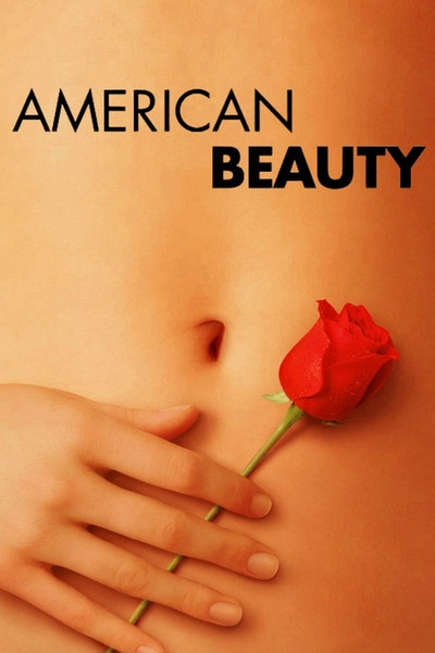 15 Best American Beauty Quotes Quote Catalog