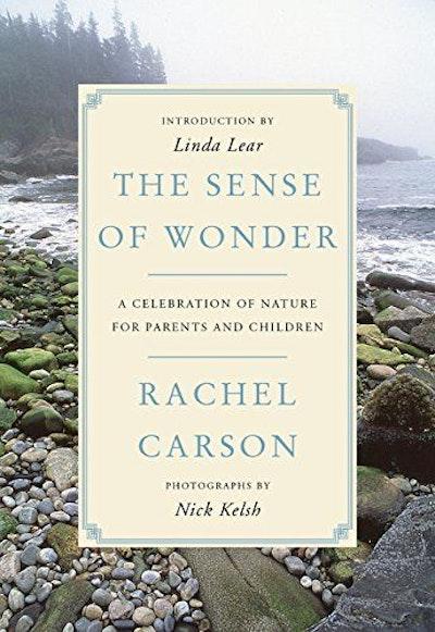 The Sense of Wonder