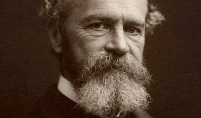 William James photo