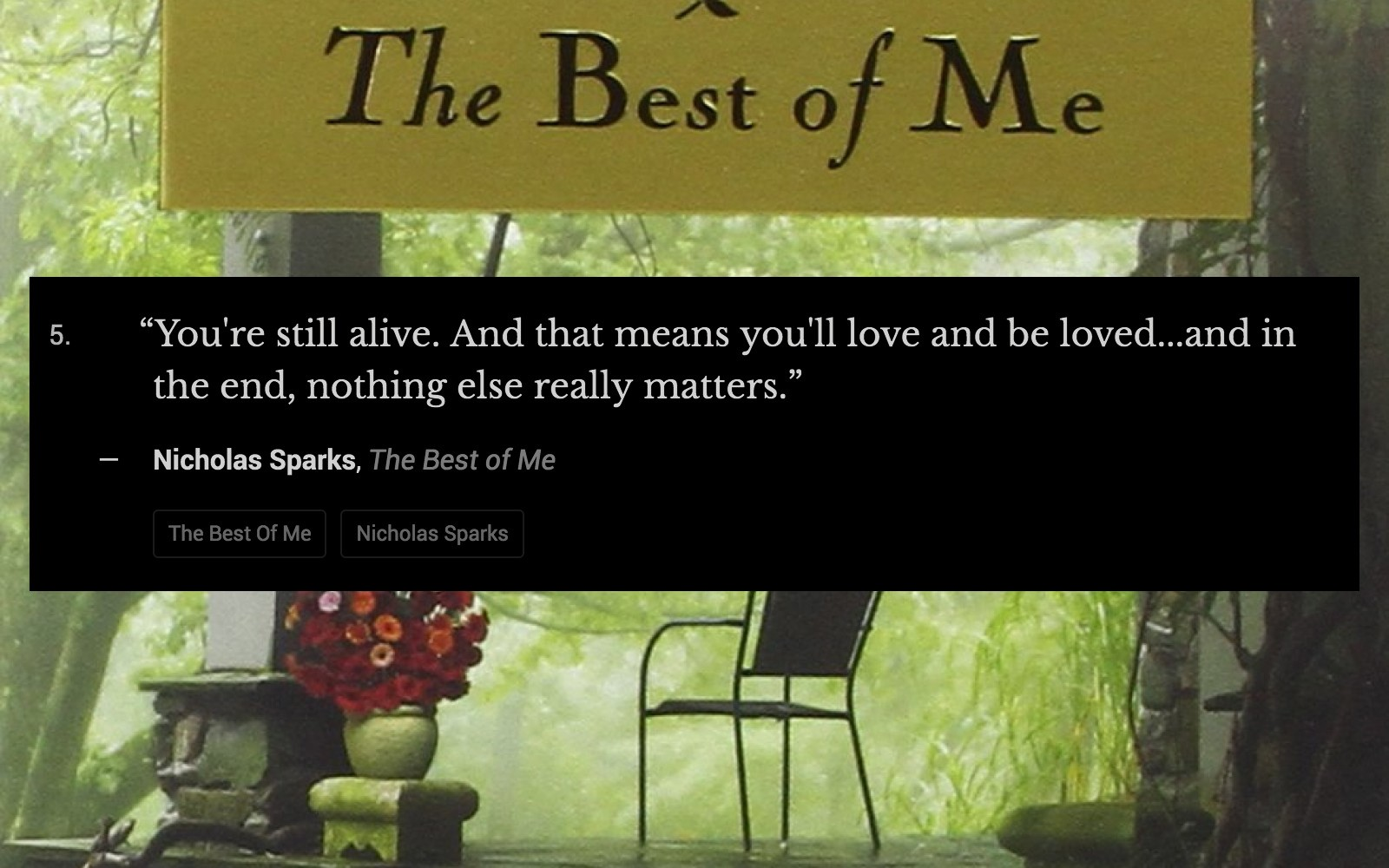 17 Gorgeous And Heartbreaking Quotes From The Best Of Me Quote