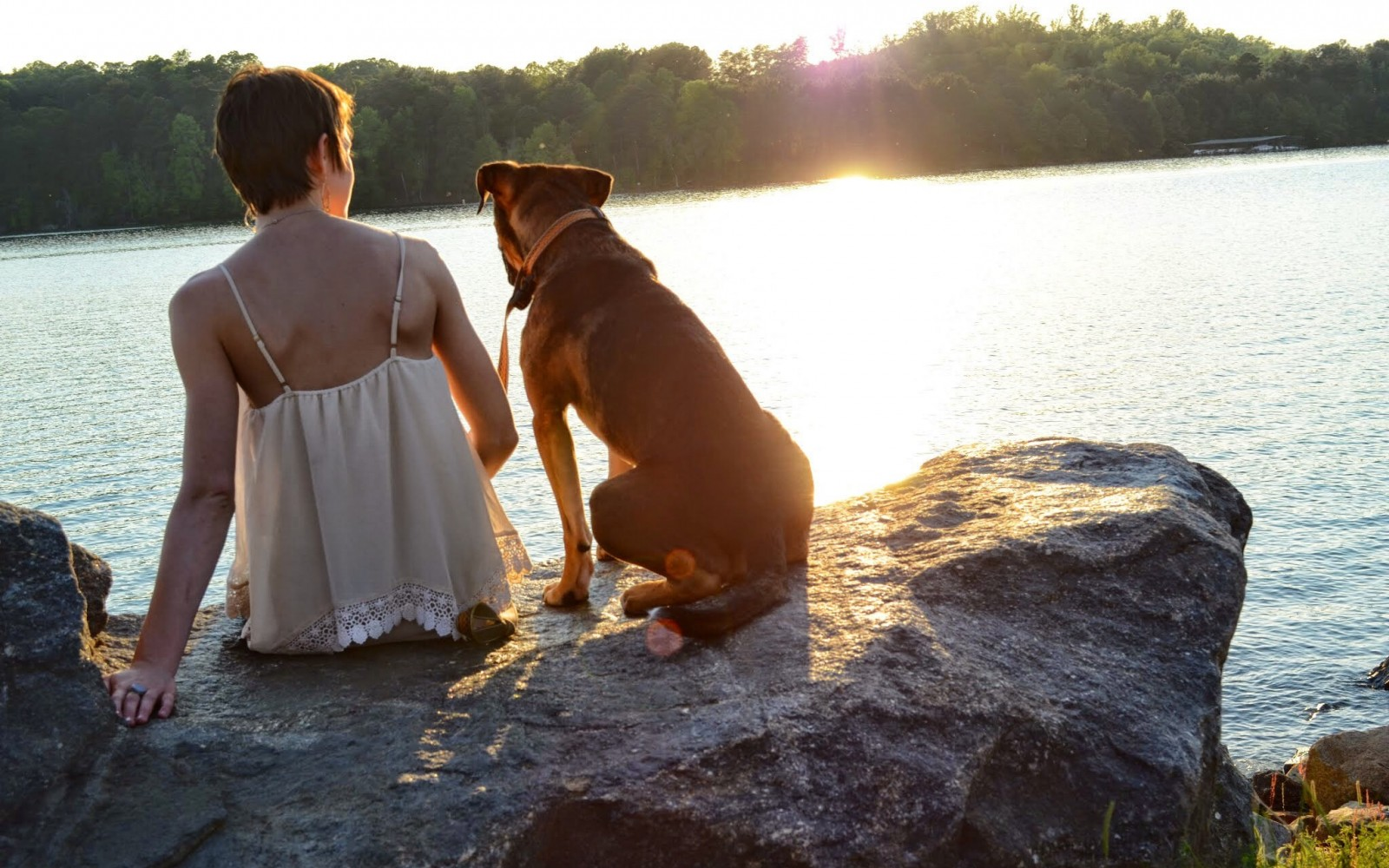 51 Quotes Anyone Would Appreciate If They're Obsessed With Their Dog
