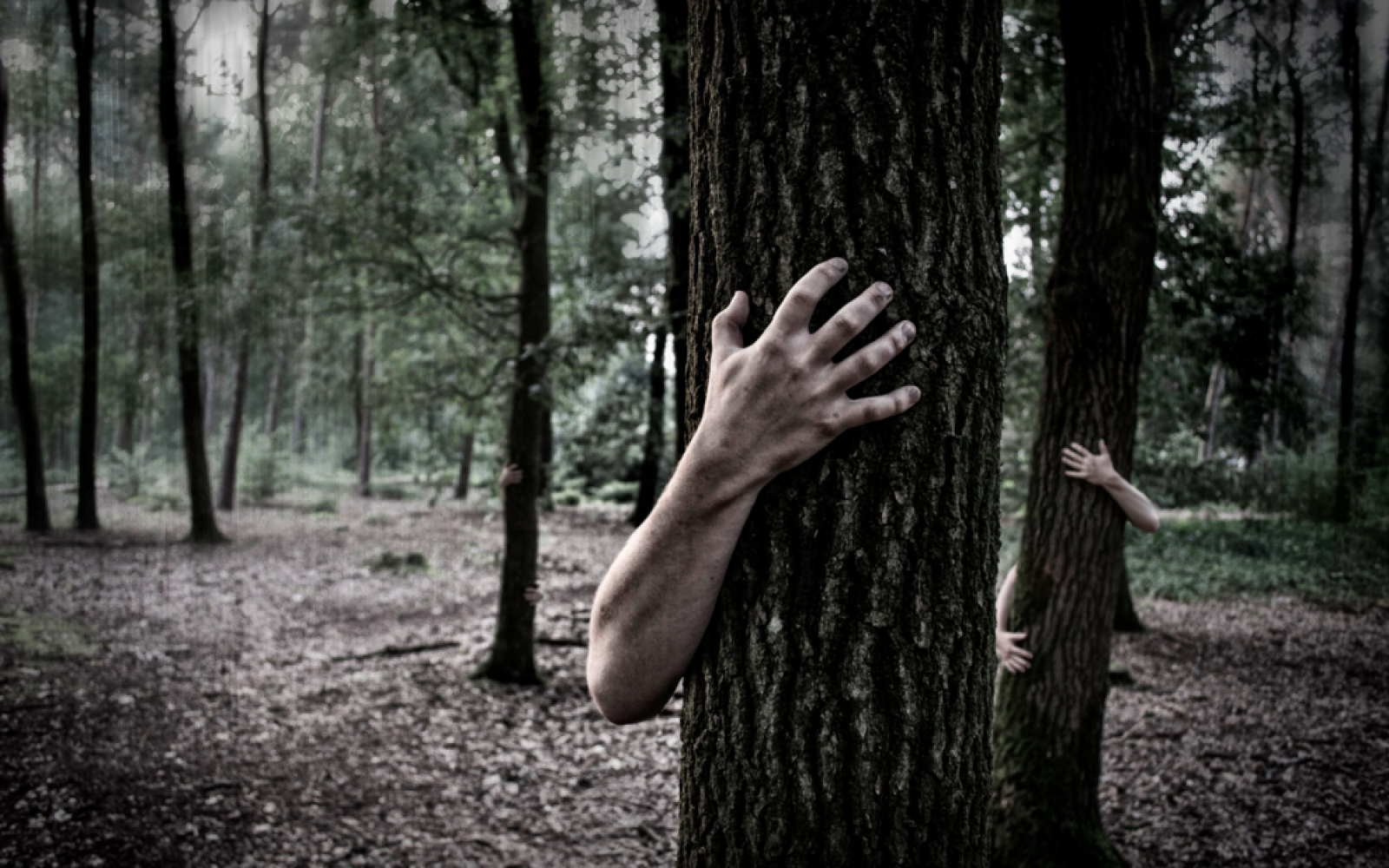 The 10 Creepiest Two-Sentence Horror Stories
